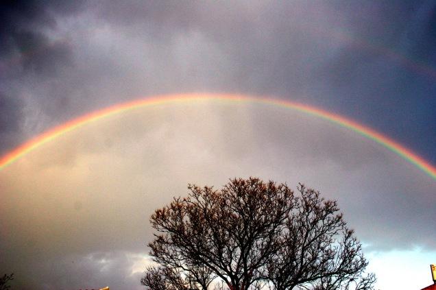 rainbow-3-1531291